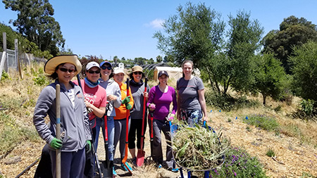 Oakland, CA Mathematica staff involved in corporate giving for a nonprofit Planting Justice