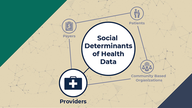 Social Determinants of Health Data Providers