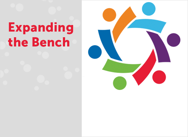 Expanding the Bench Diversity Council image